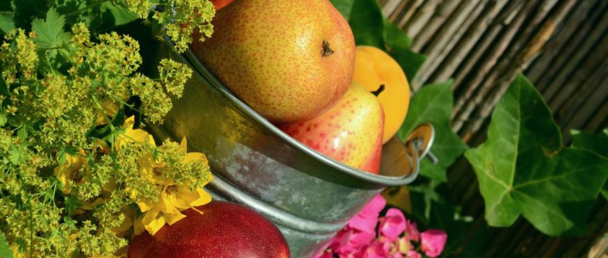 Intoleranz Allergie Unverträglichkeit Nahrungsmittel